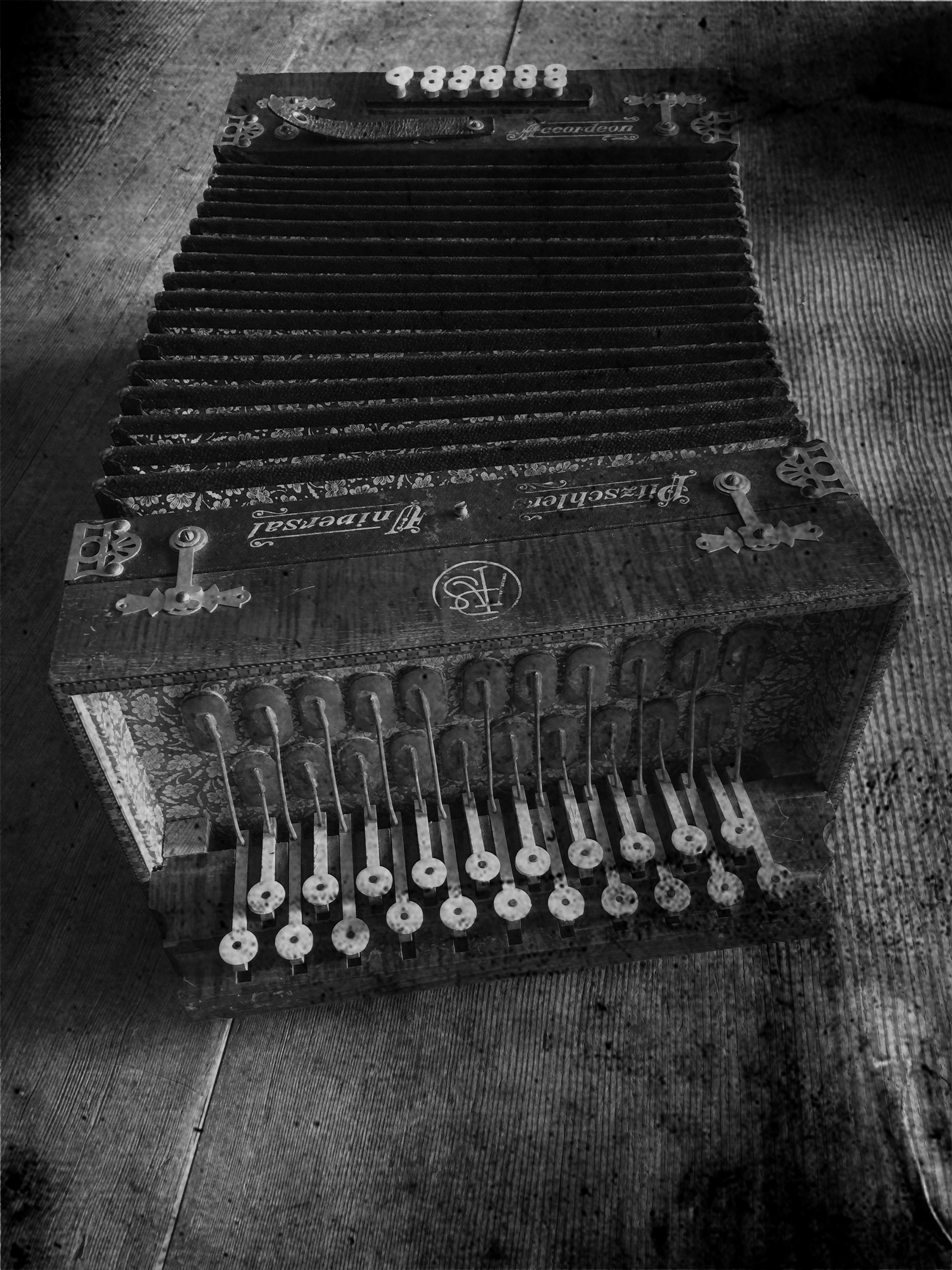 accordianIMG_6947.bw