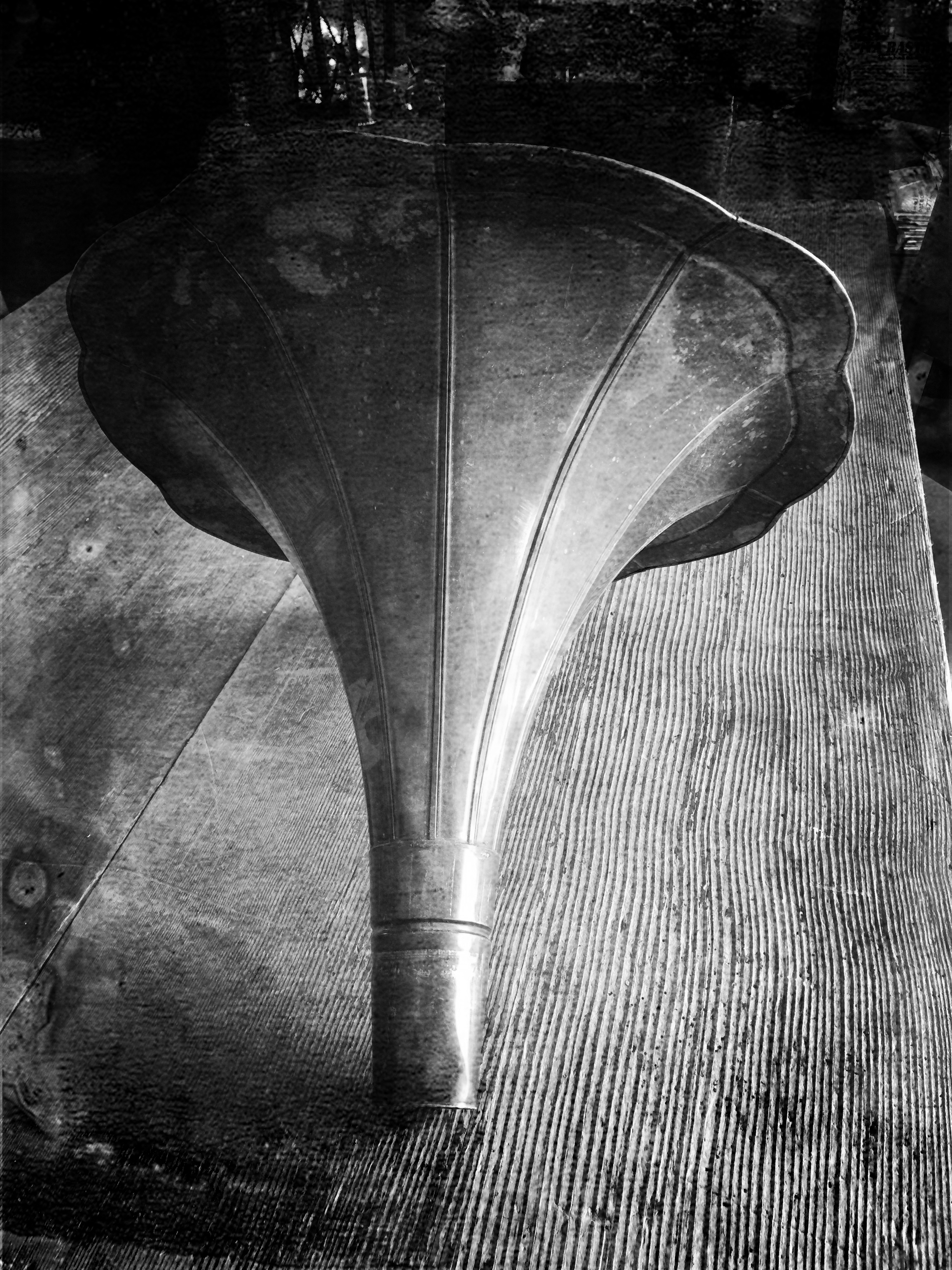 phonograph speaker.bw.IMG_7397