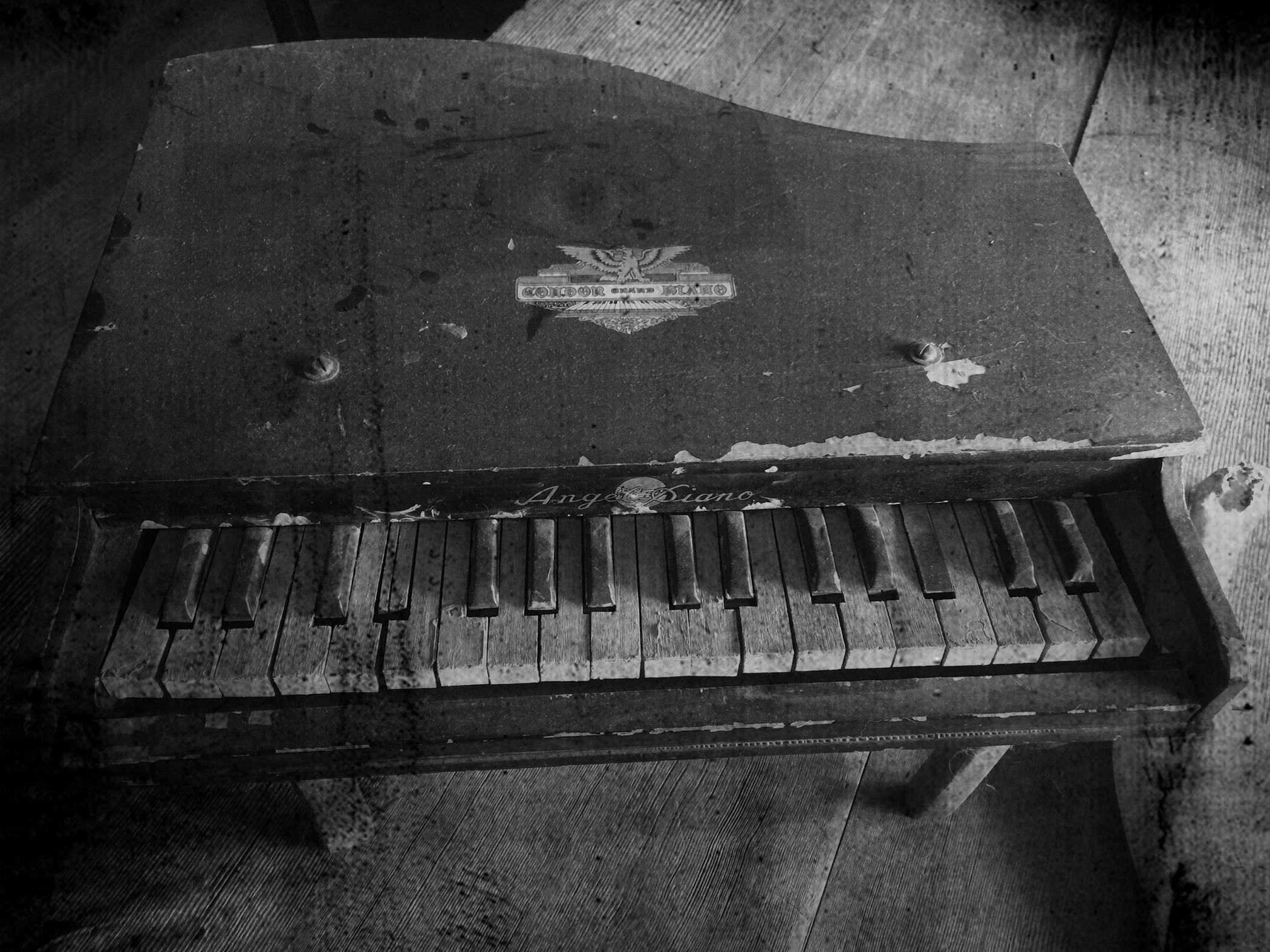 toy pianoIMG_7023.bw